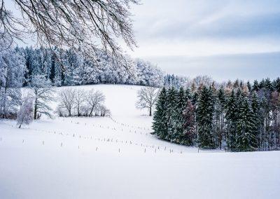 Winterliche Landschaft im Odenwald